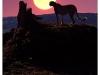 sunset-cheetah